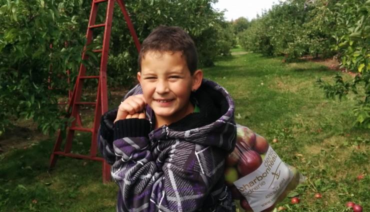 Sortie aux pommes !